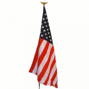 Bandiera Stati Uniti c/asta e aquila